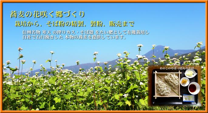 蕎麦の花咲く郷づくり 栽培から、そば粉の精製、製粉、販売まで